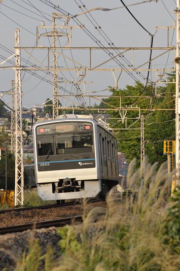 D300_10827 WXGA.jpg
