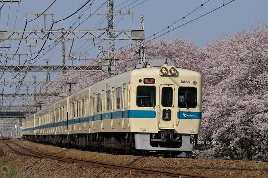 D300_16013 WXGA.jpg