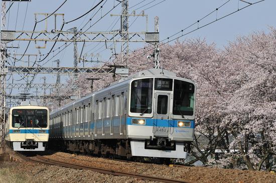 D300_19118 WXGA.jpg
